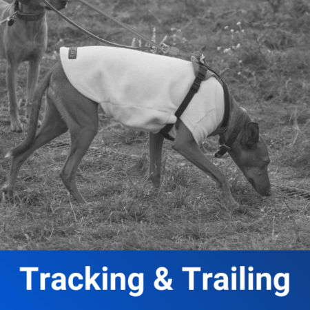tracking and trailing